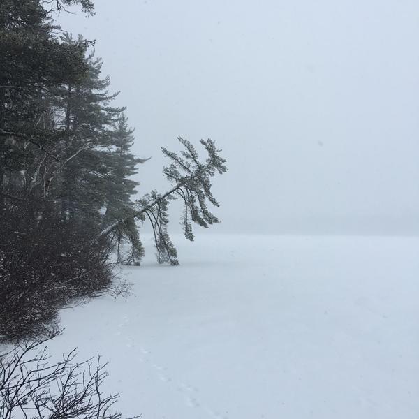 Winter_Palette-1